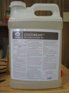 CocoBear_b